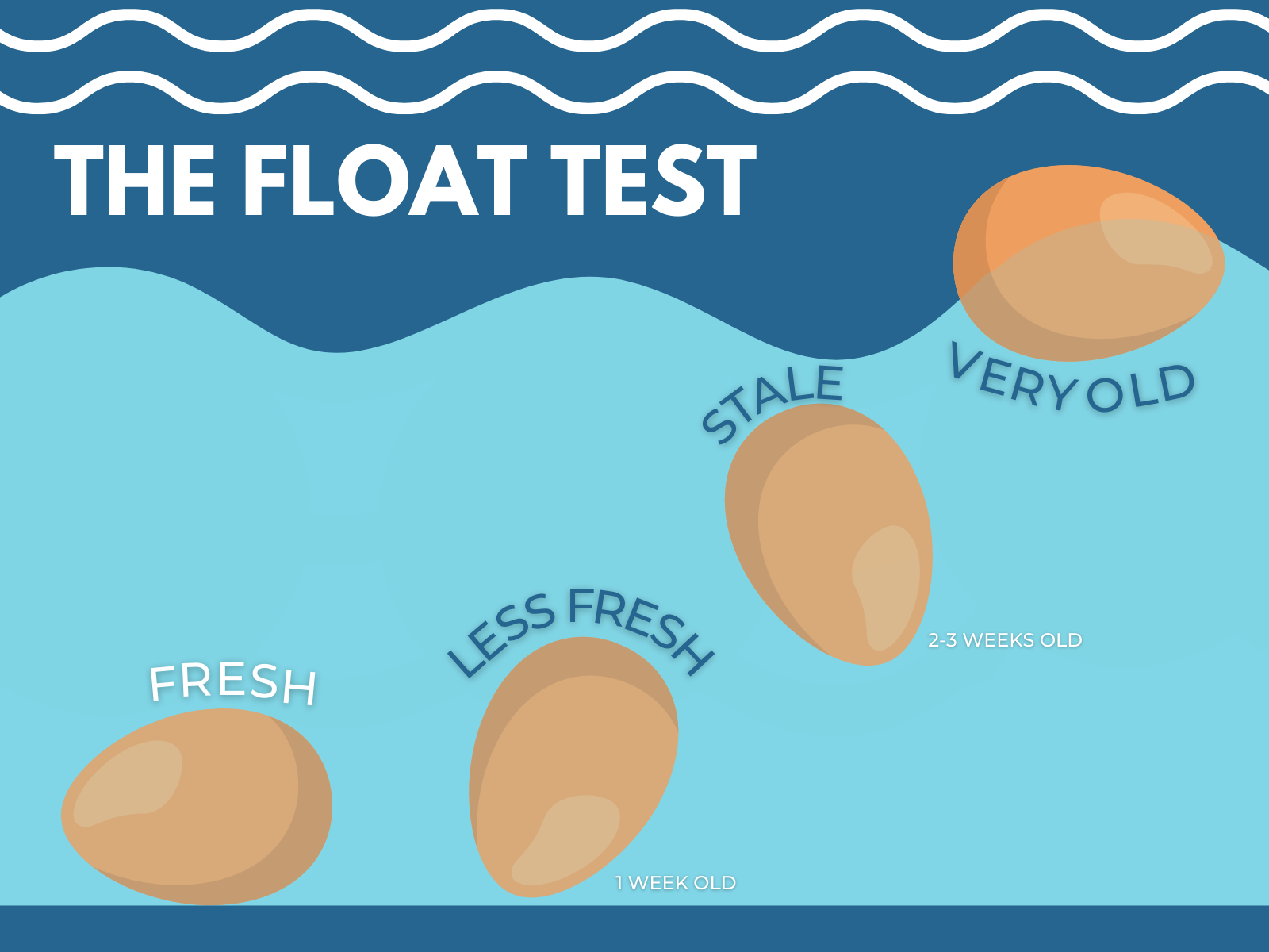 The Float Test (AJINOMOTO)