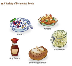 a variety of fermented foods