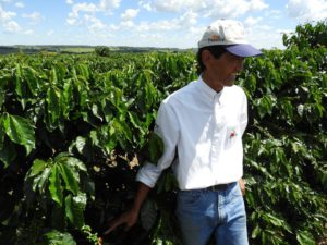 Fazenda Bau, a family-run coffee plantation is headed by Tomio Fukuda.