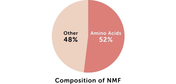 Composition of NMF